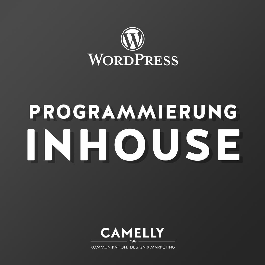 Eine WordPress-Webseite löst Probleme? Das wollten wir mal sehen.